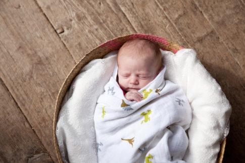 photographe bébé Grenoble Crolles