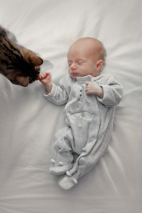 séance nouveau-né à grenoble